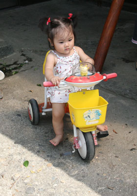 三輪車を借りました