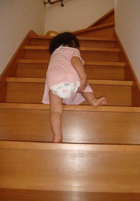 階段で鍛えます