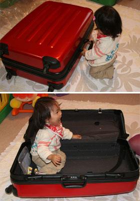 スーツケースの中に